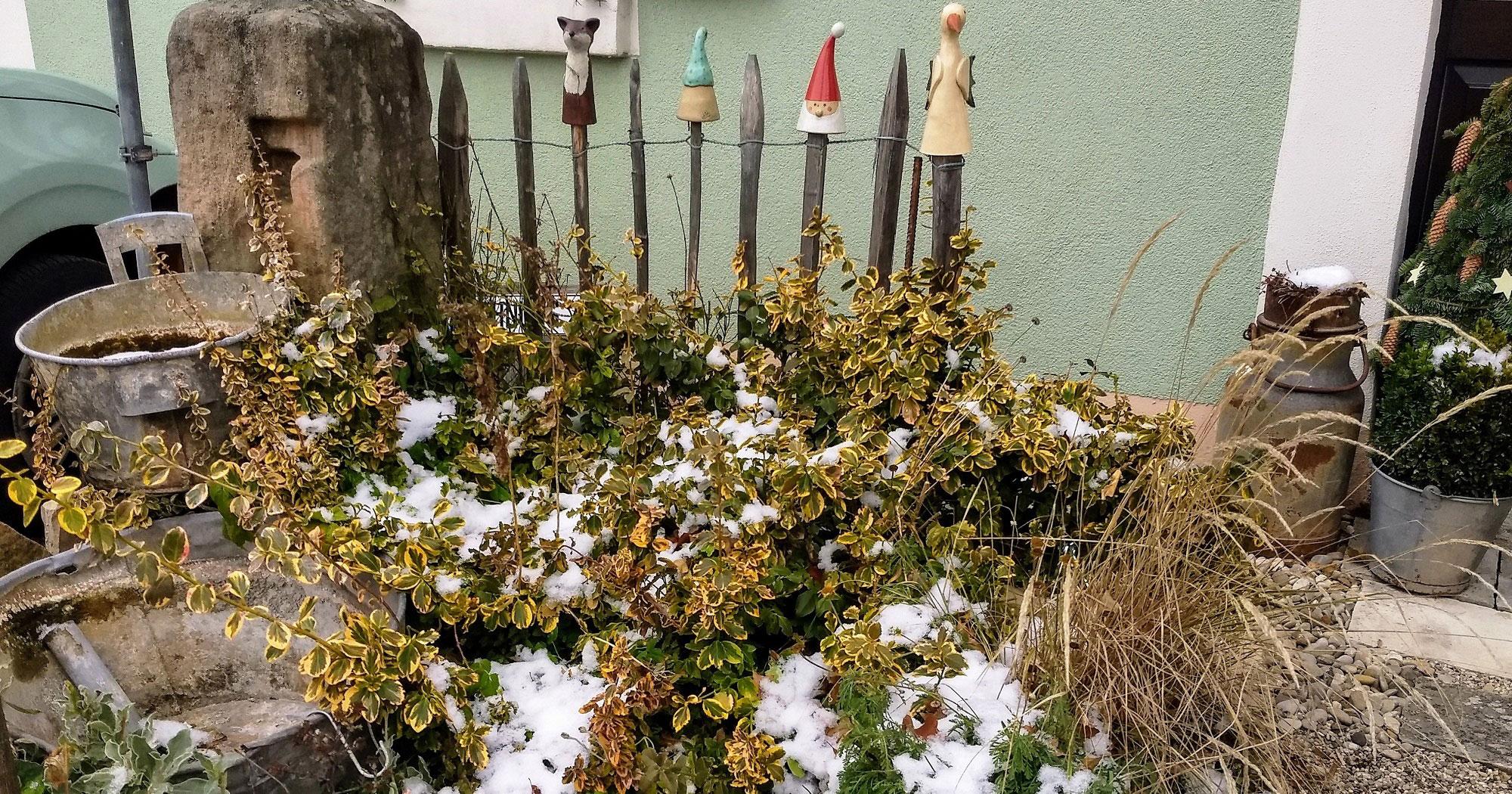 4-Garten